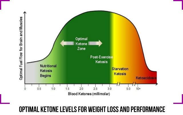 Optimal Ketone levels measure ketones meter ketone Peter Andros Keto King TheManCanCook KetosisTools
